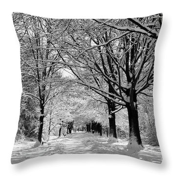 Throw Pillow featuring the photograph Winter Wonder Land by John S