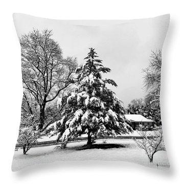 Winter Wonderland - 2017 Throw Pillow