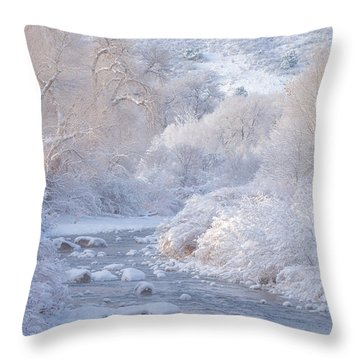 Winter Wonderland - Colorado Throw Pillow