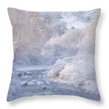 Winter Wonderland - Colorado Throw Pillow