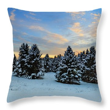 Throw Pillow featuring the photograph Winter Wonderland  by Emmanuel Panagiotakis