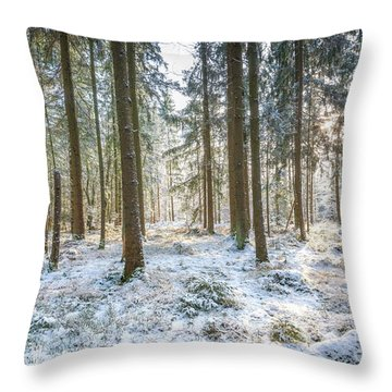Throw Pillow featuring the photograph Winter Wonderland by Hannes Cmarits
