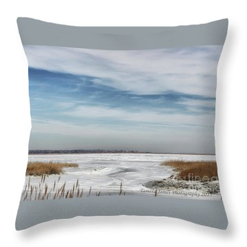 Throw Pillow featuring the photograph Winter Wonderland by Tamera James