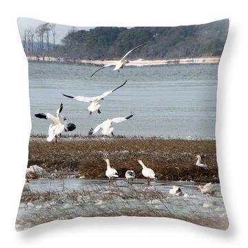 Winter Wonders 1 Throw Pillow