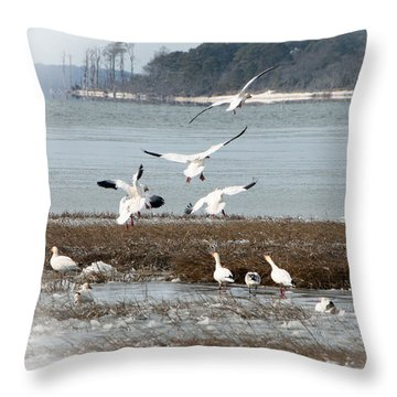 Winter Wonders 1 Throw Pillow