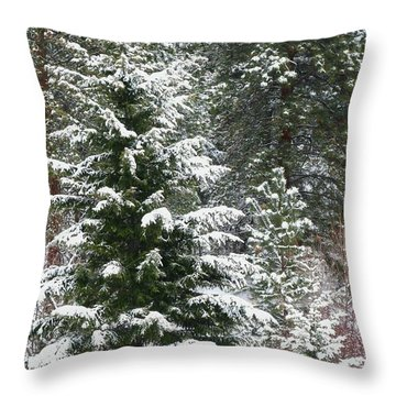 Throw Pillow featuring the photograph Winter Woodland by Will Borden