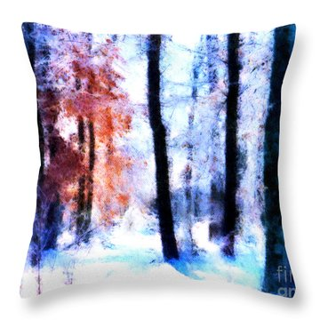Winter Woods Throw Pillow by Craig Walters