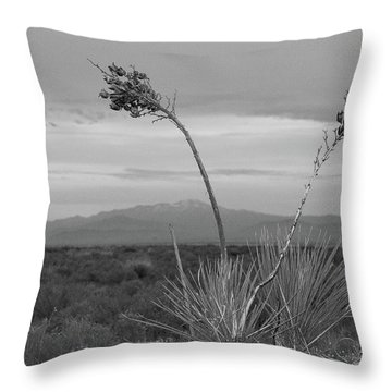 Winter Yucca Throw Pillow