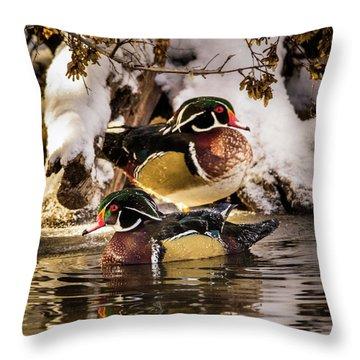 Wintering Wood Ducks Throw Pillow