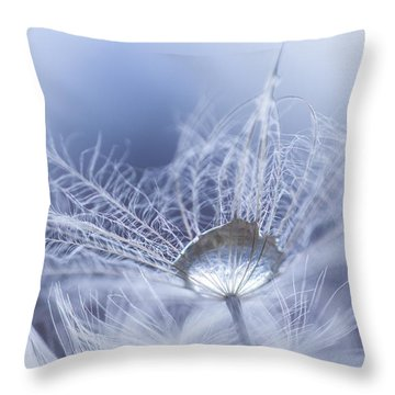 Wintermint Throw Pillow