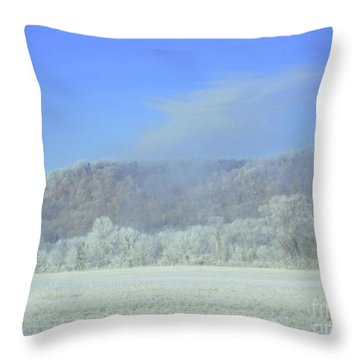 Winter's An Etching... Throw Pillow