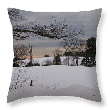 Winter's Beauty Throw Pillow