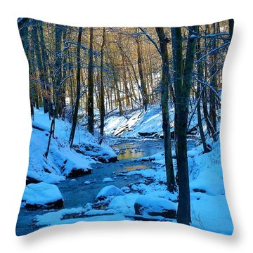Winter's Cold Touch Throw Pillow