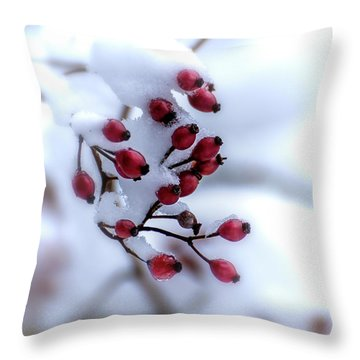 Winter's Color Throw Pillow