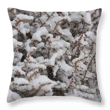 Winter's Contrast Throw Pillow by Carol Groenen
