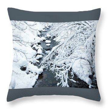 Winters Creek- Throw Pillow