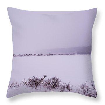 Winter's Desolation Throw Pillow
