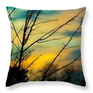 Winters Dusk Throw Pillow