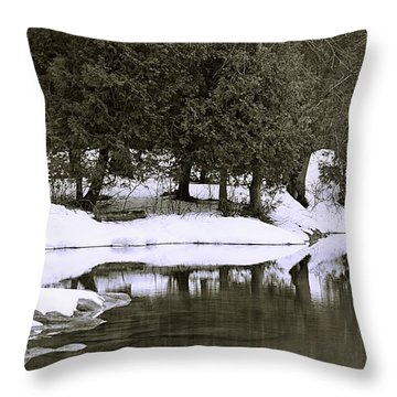 Throw Pillow featuring the photograph Winter's Edge by Al Fritz