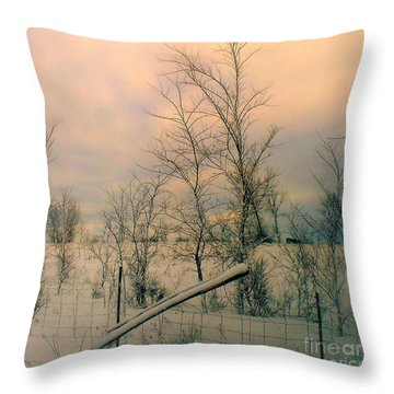Throw Pillow featuring the photograph Winter's Face by Elfriede Fulda