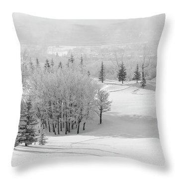 Winter's Gentle Kiss Throw Pillow