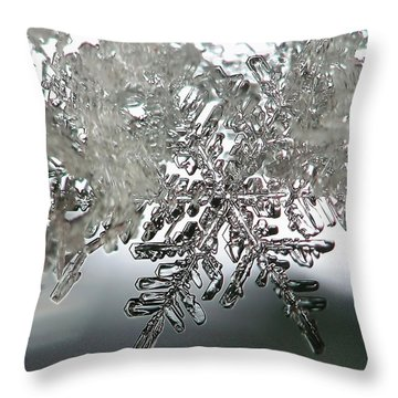 Winter's Glory Throw Pillow