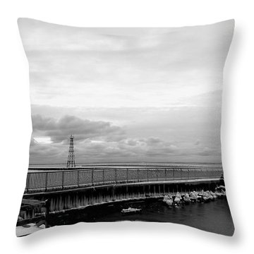 Throw Pillow featuring the photograph Winter's Icy Grip On Lighthouse Ann Arbor Park by Mark J Seefeldt