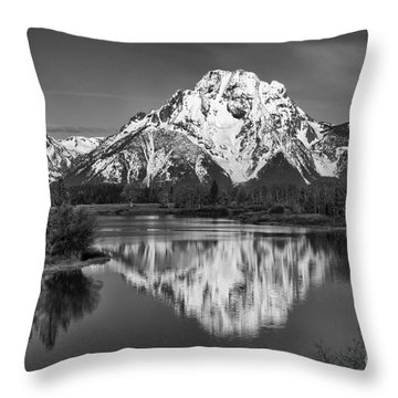 Winter's Last Hold Throw Pillow by Sandra Bronstein