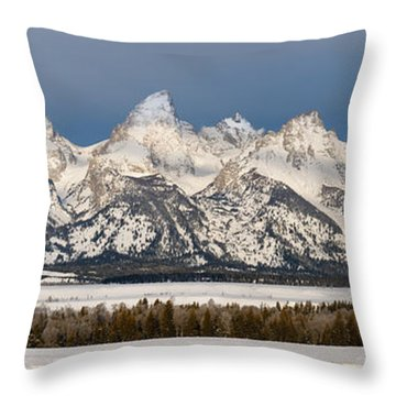 Winter's Majesty Throw Pillow