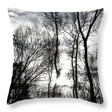 Winter's Mystic Horizon Throw Pillow