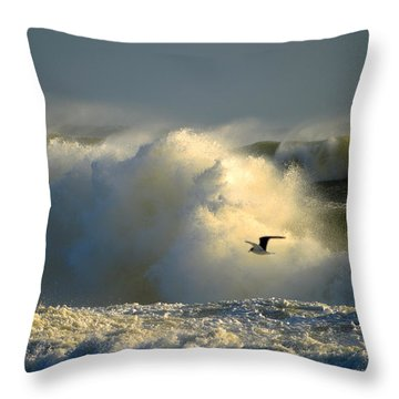 Winter's Passing Throw Pillow by Dianne Cowen