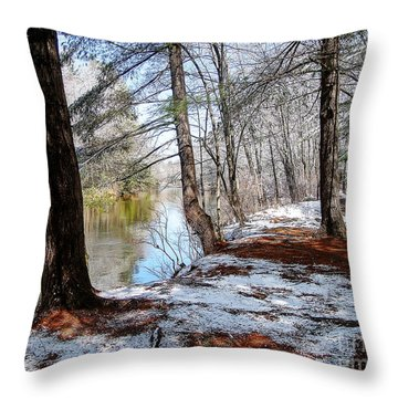 Winter's Remains Throw Pillow