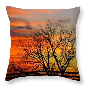 Winter's Scene Throw Pillow by Donald C Morgan