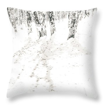 Throw Pillow featuring the photograph Winter's Shadows by The Forests Edge Photography - Diane Sandoval