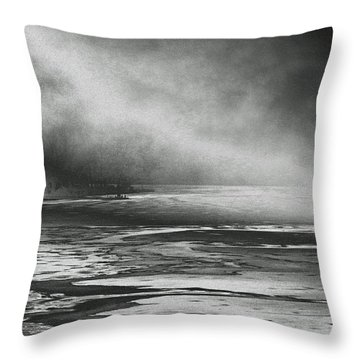 Throw Pillow featuring the photograph Winter's Song by Steven Huszar