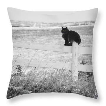 Winter's Stalker Throw Pillow
