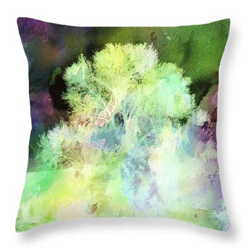 Winters Storm Throw Pillow