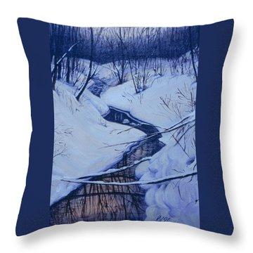 Winter's Stream Throw Pillow