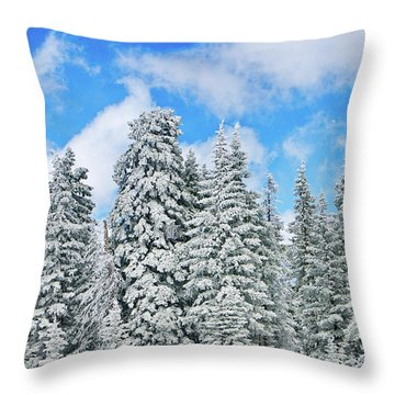 Winterscape Throw Pillow by Jeff Kolker