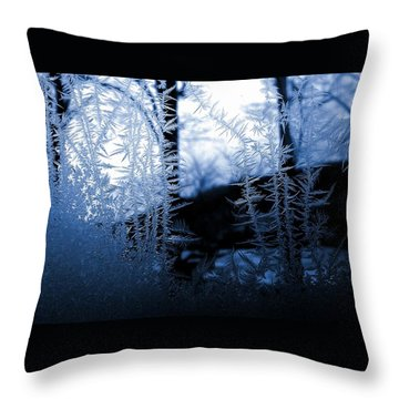 Wintertide Throw Pillow by Danielle R T Haney