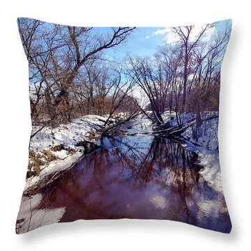 Wintertime In Necedah  Throw Pillow by Ricky L Jones