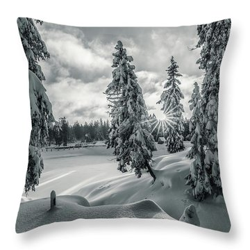 Winter Wonderland Harz In Monochrome Throw Pillow
