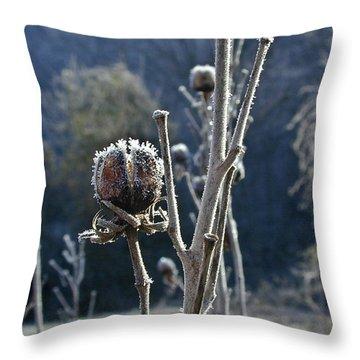 Wintery Begining Throw Pillow by Douglas Barnett