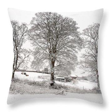 Wintery Scene Throw Pillow