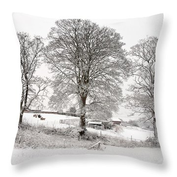 Wintery Scene Throw Pillow