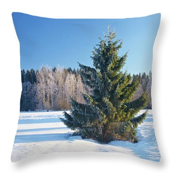Wintry Fir Tree Throw Pillow