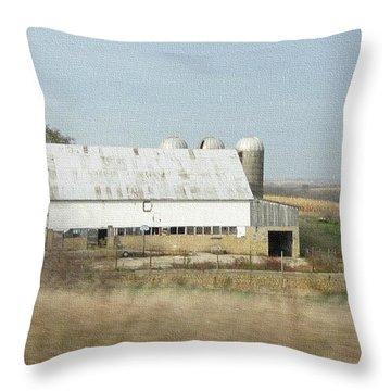 Wisconsin Dairyland Throw Pillow