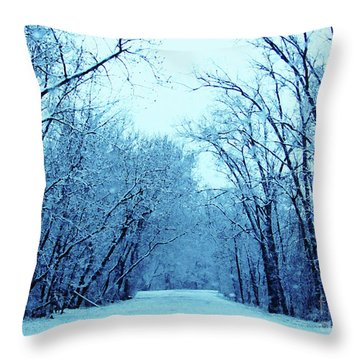 Wisconsin Frosty Road In Winter Ice Throw Pillow