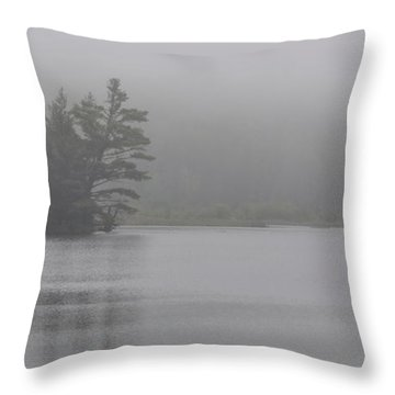 Wisconsin In Grey And Green Throw Pillow