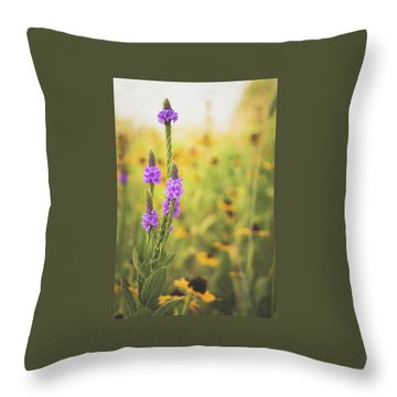 Wisconsin In July Throw Pillow